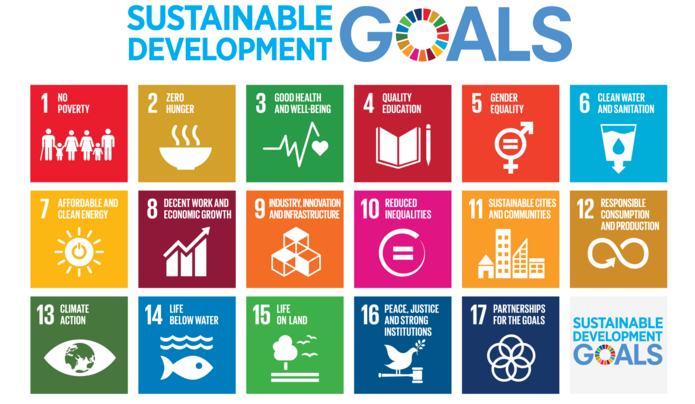 Poster zeigt Sustainable Development Goals